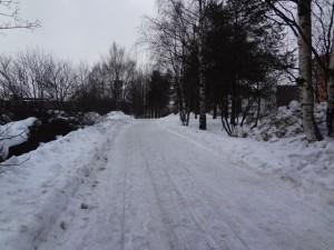 フィンランド2015 029
